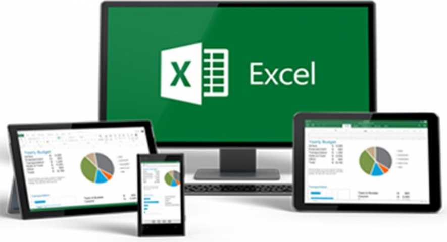 MS Office Excel Basic