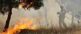 Σε ύφεση η φωτιά κοντά σε σπίτια στη Σαλαμίνα – Υπάρχουν ακόμη διάσπαρτες εστίες
