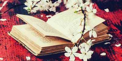 ΑΡΧΑΙΑ ΣΟΦΙΑ - Η κριτική ανάλυση της Δρ. Πιπίνας Δ. Έλλη για την ποίηση του Γιώργου Σταυράκη